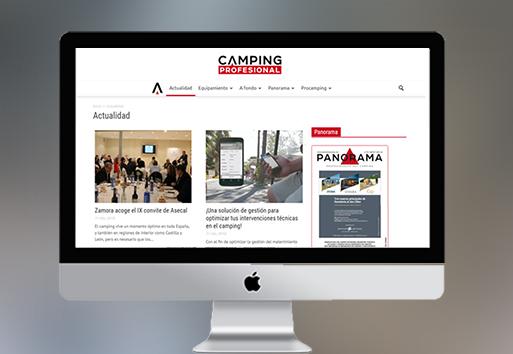 Insertion e-news-Presse Web-Espagne-Conseil Mkg